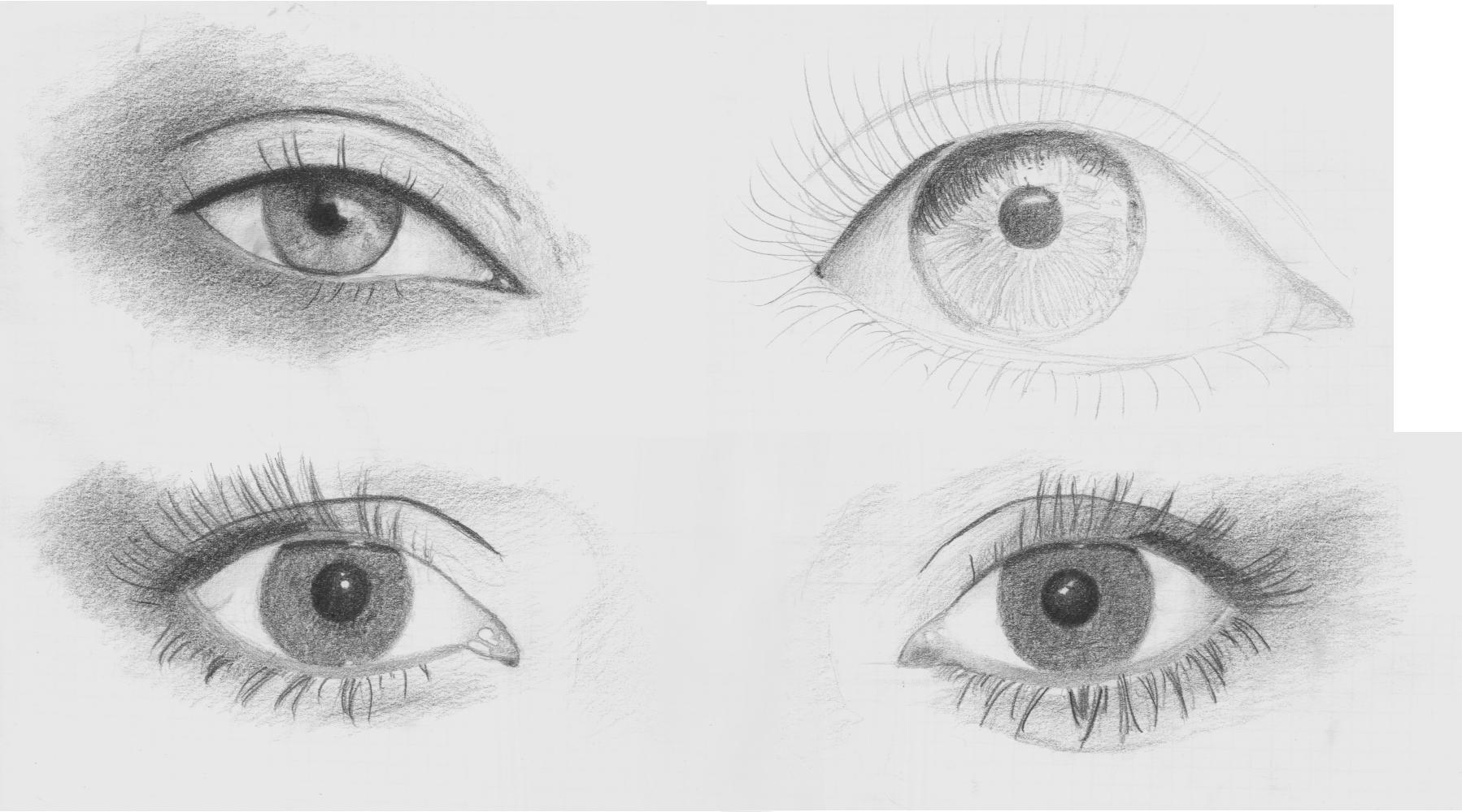 Studium oczu