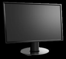 Taki monitorek