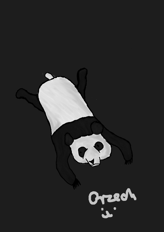 Pandziocha